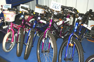 Other Bikes